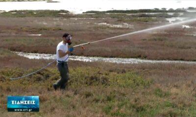 Θεσσαλονίκη: Ξεκίνησε το πρόγραμμα καταπολέμησης κουνουπιών (vid)
