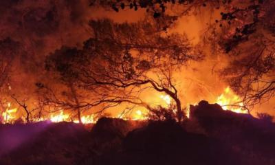 Αδάμες: Χάθηκαν περιουσίες – Μεγάλη οικολογική καταστροφή (vid)