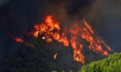 Η Ελλάδα στις φλόγες! (vids)